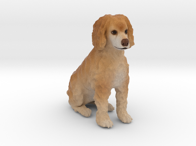 Custom Dog Figurine - Jena in Full Color Sandstone