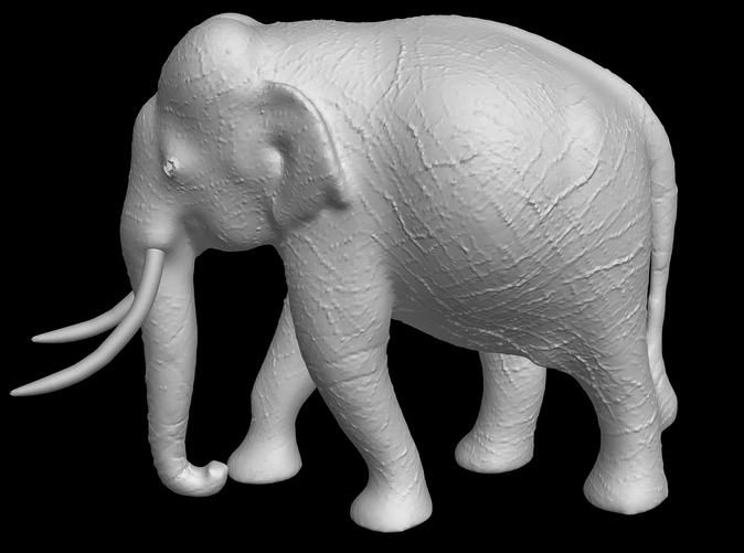 Indian Elephant (side view)