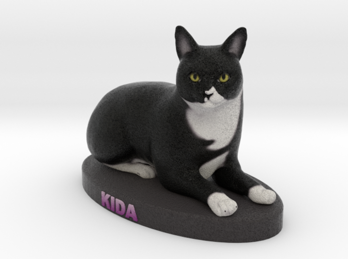 Custom Cat Figurine - Kida 3d printed