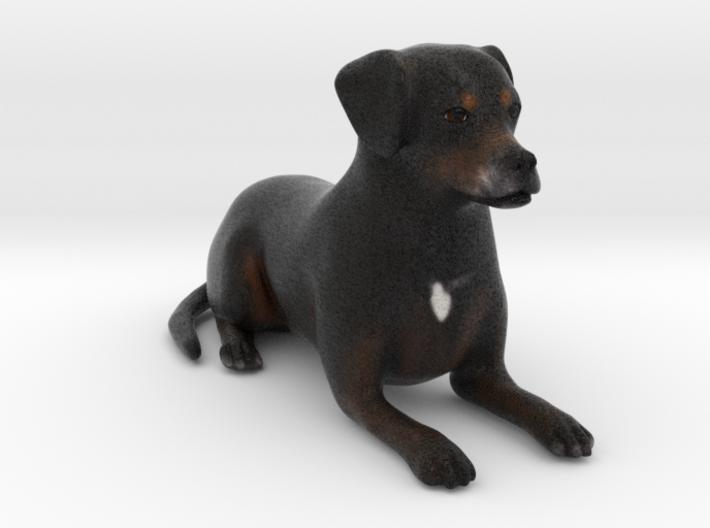 Custom Dog Figurine - Buzz 3d printed