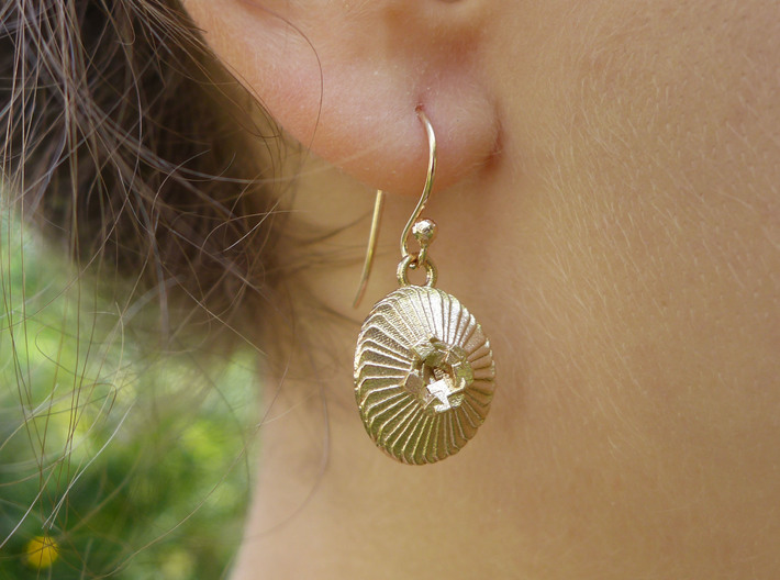 Coccolithus Coccolithophore Plankton Earrings 3d printed Coccolithus earring in raw bronze, front