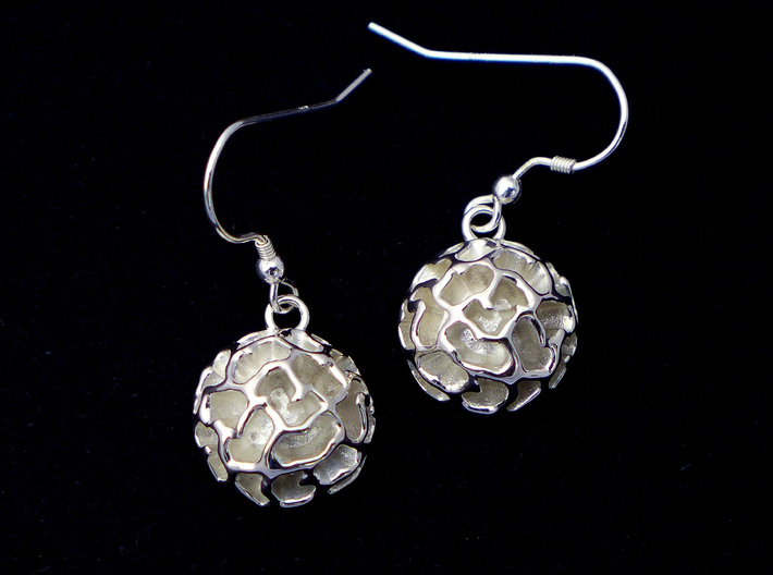 Fossil Acritarch Cymatiosphaera Earrings 3d printed Dinocyst earrings in polished silver