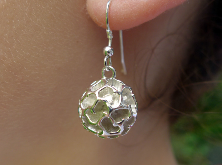 Fossil Acritarch Cymatiosphaera Earrings 3d printed Dinocyst earring in polished silver