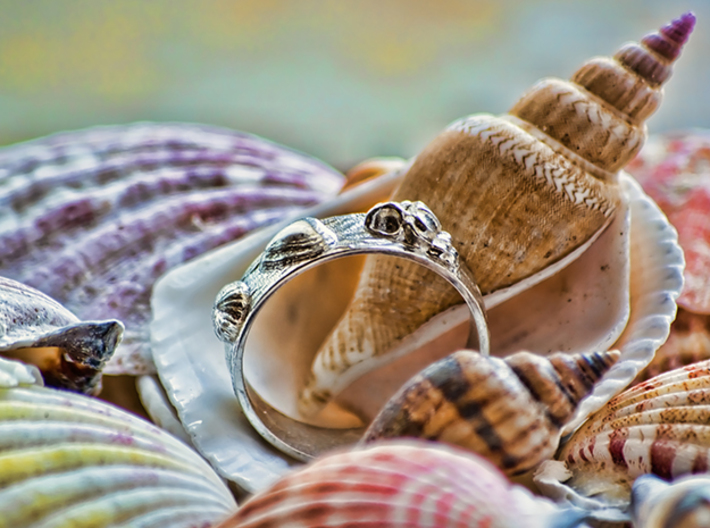 Sea Shell Ring 1 - US-Size 8 (18.19 mm) 3d printed Seashell Ring in polished silver (shown: size 10)