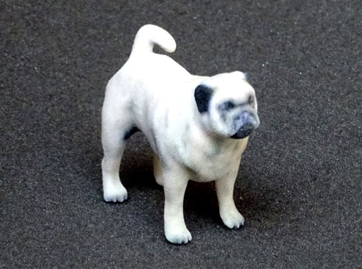 Standing Fawn Pug 3d printed