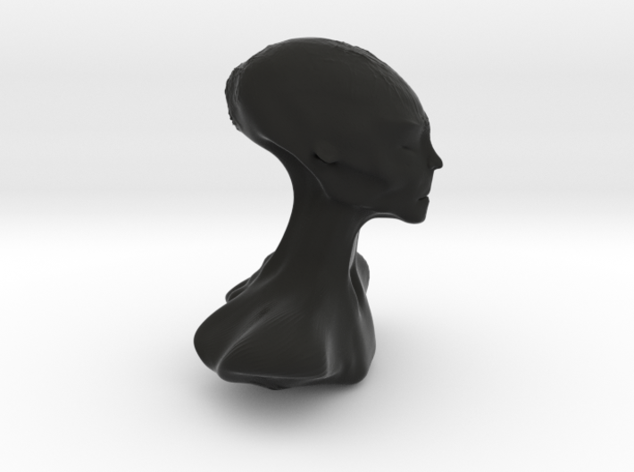 Homo Capensis Alien Bust 3d printed