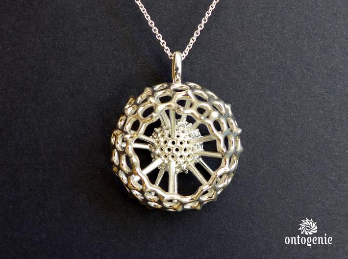Spumellaria spineless Radiolarian pendant 3d printed Spumellaria spineless pendant in polished silver
