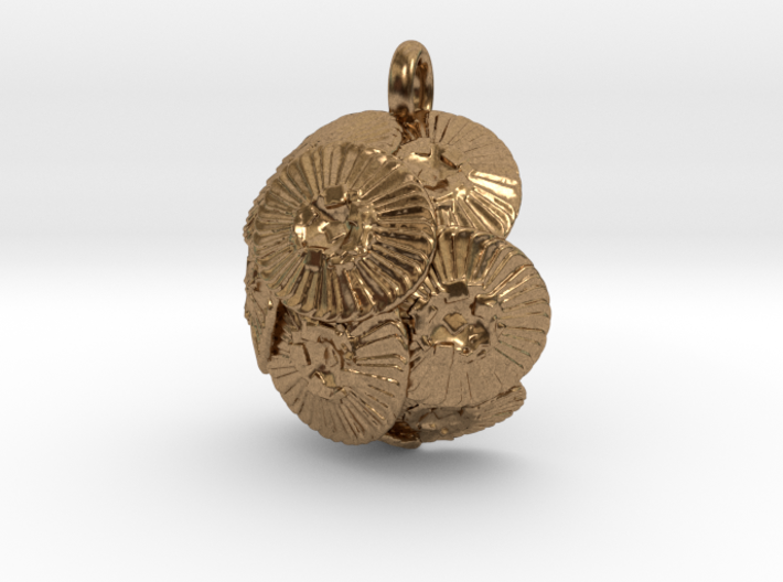 Coccolithus Pendant - Science Jewelry 3d printed