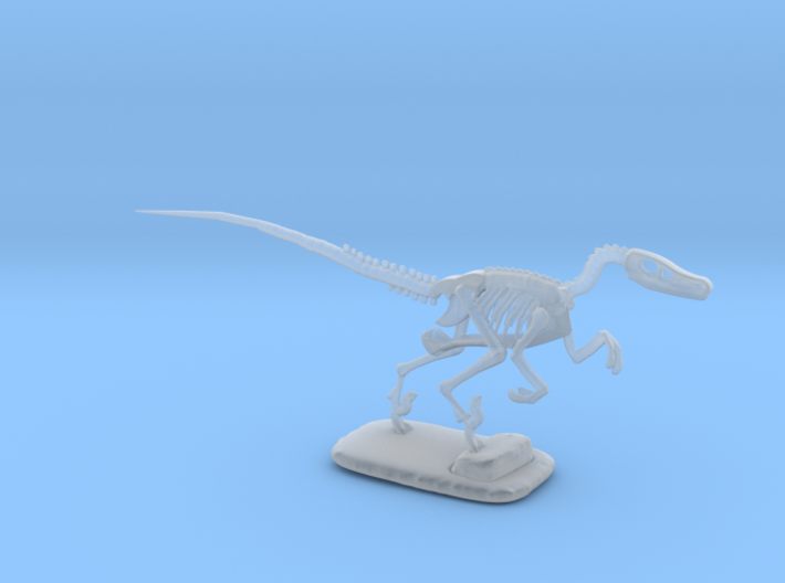 Dinosaurs Story Velociraptor Skeleton Full Color  3d printed