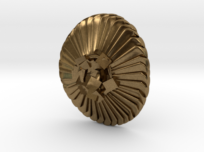 Coccolithus Lapel Pin - Science Jewelry 3d printed