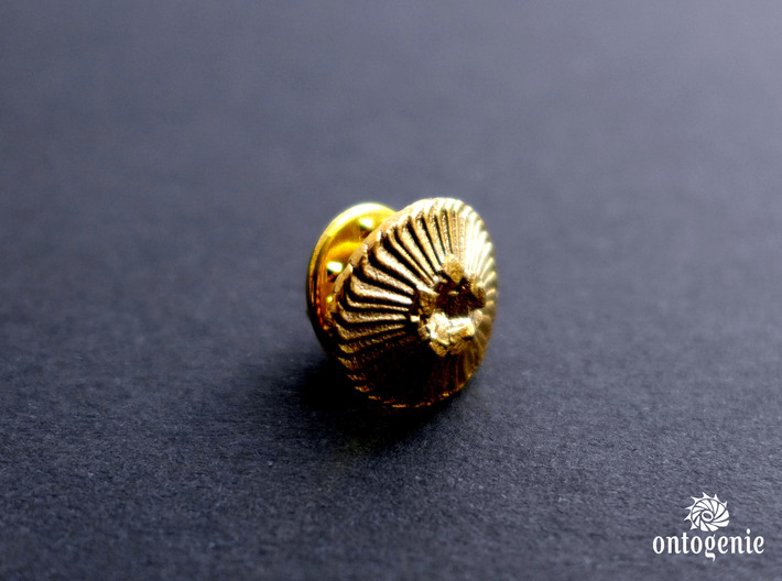 Coccolithus Lapel Pin - Science Jewelry 3d printed Dailyatia lapel pin in raw bronze