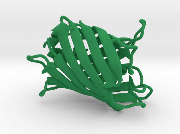 Green Fluorescent Protein 3d printed