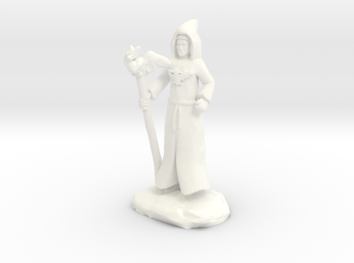 Dracandros, dragon cultist with Staff 3d printed