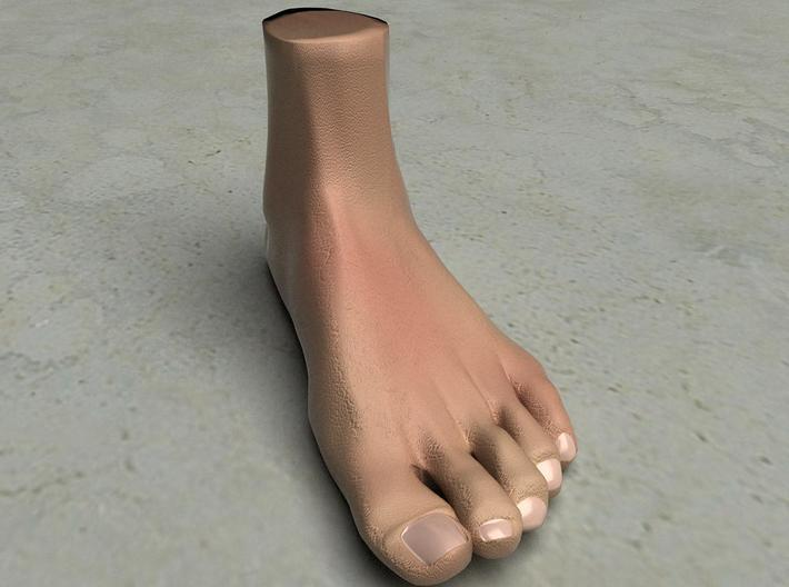 """Life Size Foot - 8.7"""" - Solid 3d printed This is a rendering of the foot, not the actual product!"""