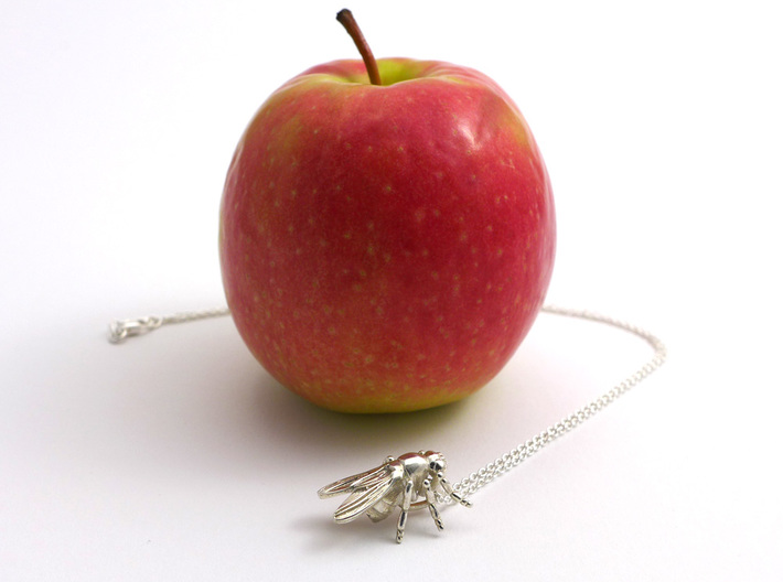 Drosophila Fruit Fly Pendant - Science Jewelry 3d printed Drosophila pendant in polished silver