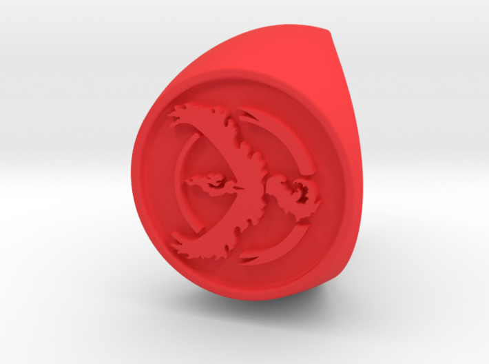 Team Valor Signet US 9 3d printed