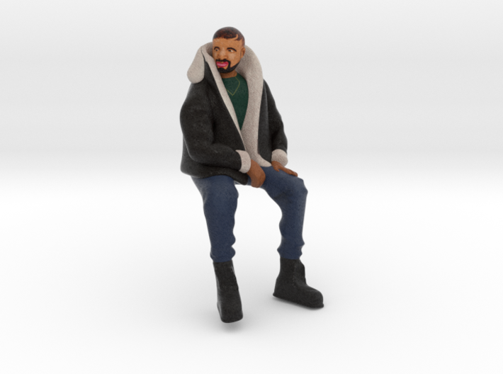 Drake | Tiny Views 3d printed