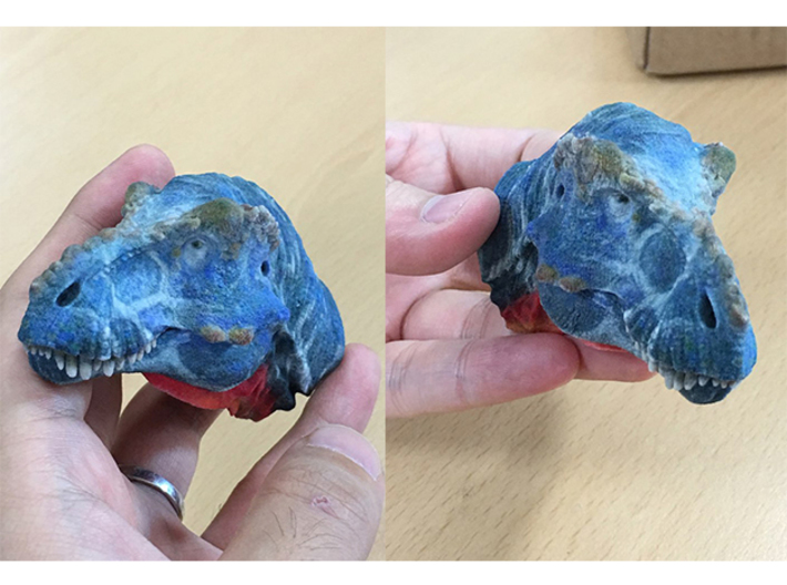 T-rex Head (Small/Medium-color size) 3d printed