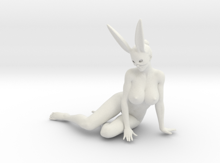 Bunny lady 011 1/10 3d printed