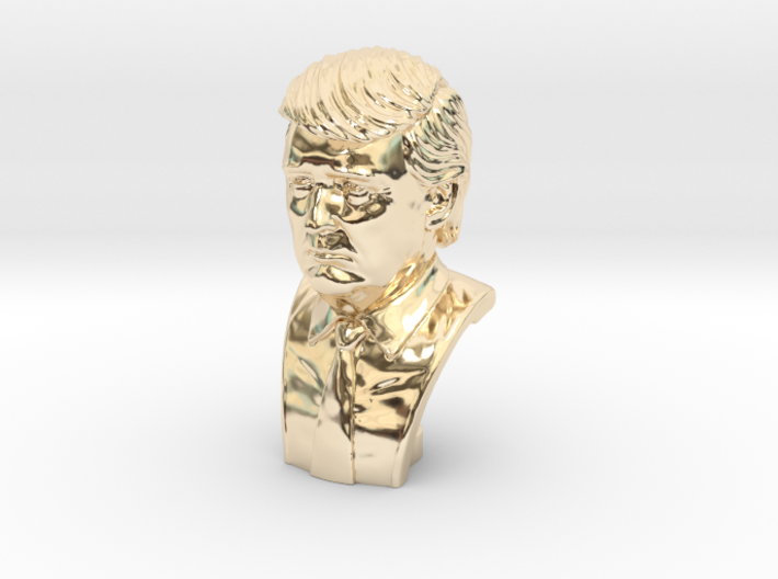 Donald Trump. Portrait bust 3d printed