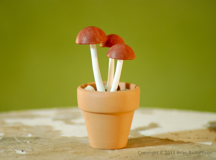 Shrooms To Be Potted 3d printed Painted WSF Polished