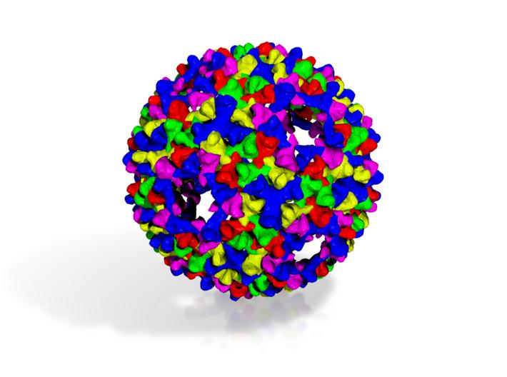 Bacteriophage PHIX174 3d printed