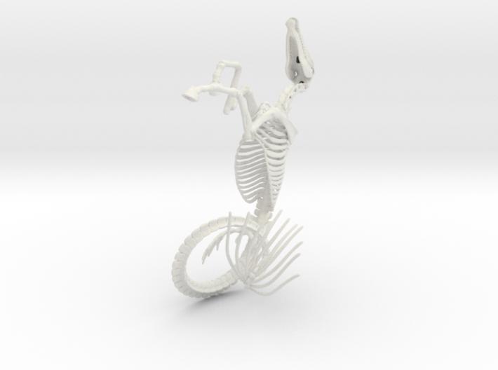 Hippocampus Skeleton 3d printed