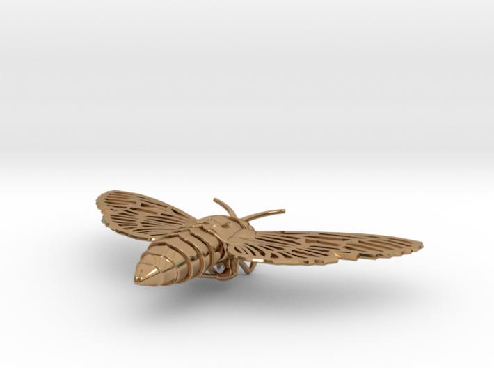 Death's-head Hawkmoth 3d printed