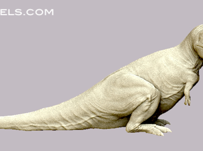 Tyrannosaurus 1:72 v3 3d printed