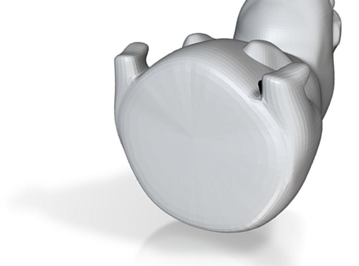 Guinea Pig 3D 3d printed