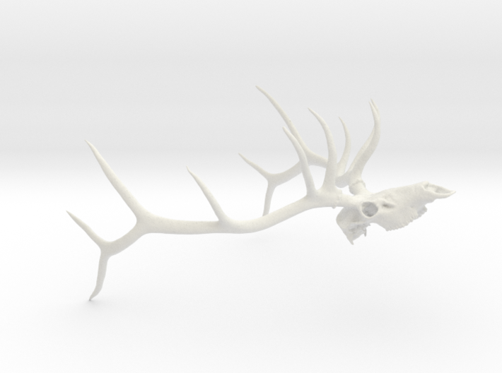 Bull Elk (John Bishop) 3d printed