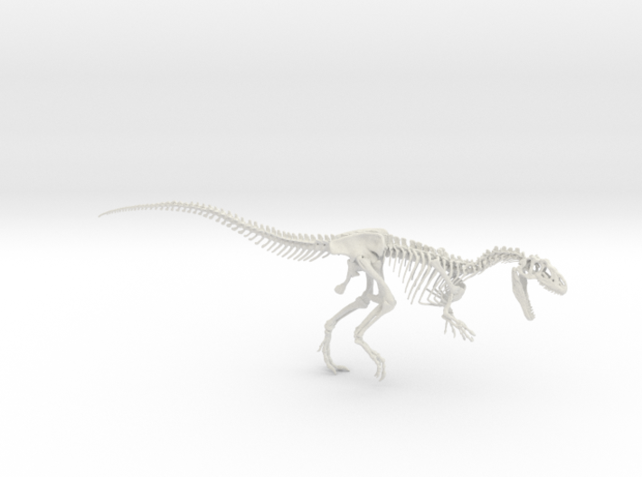 Allosaurus Skeleton (1:18) 3d printed