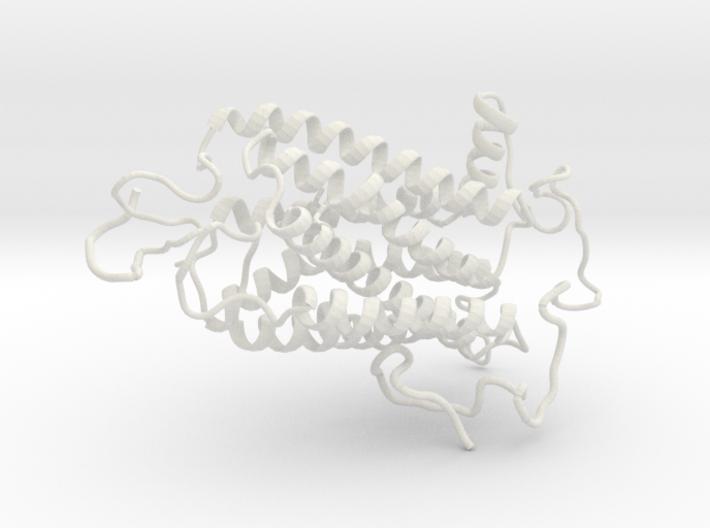 Encephalopsin Protein 3d printed