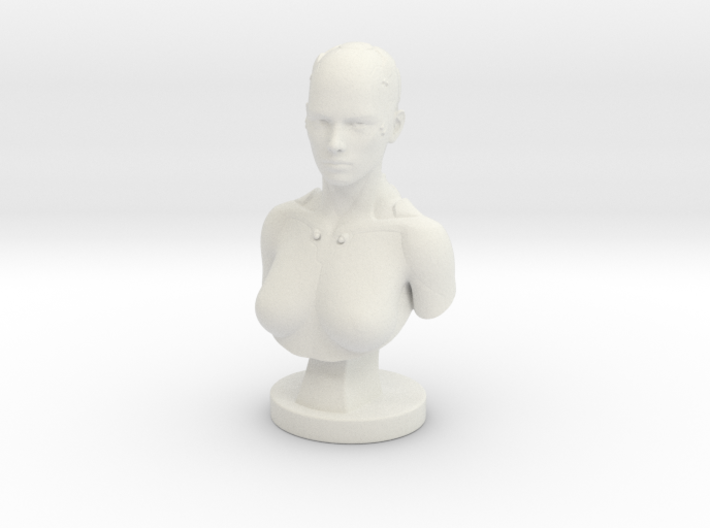 Non-scale Sci-Fi Robotic Assistant Bust Statue 3d printed