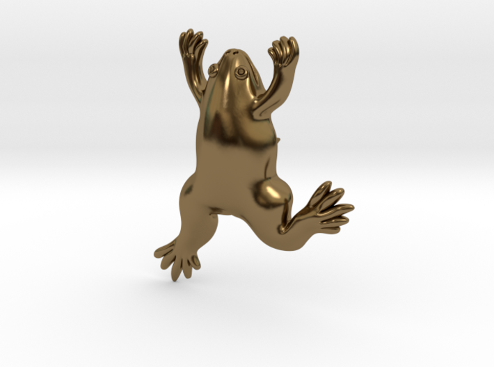 Xenopus Lapel Pin - Science Jewelry 3d printed