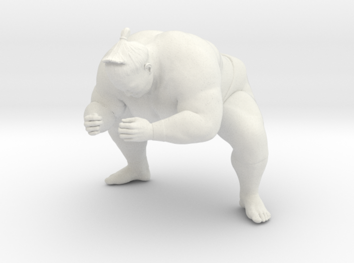 Japanese Sumo 014 3d printed