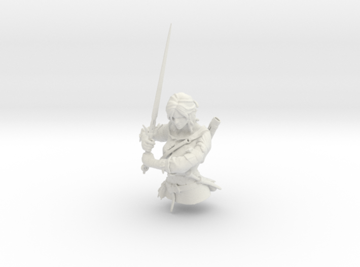 The Witcher - Ciri part 1 3d printed