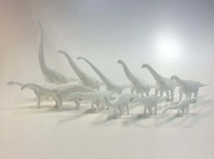 Sauropoda small package 3d printed