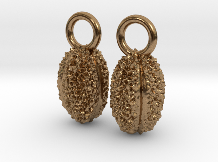 Willow Pollen Earrings - Nature Jewelry 3d printed