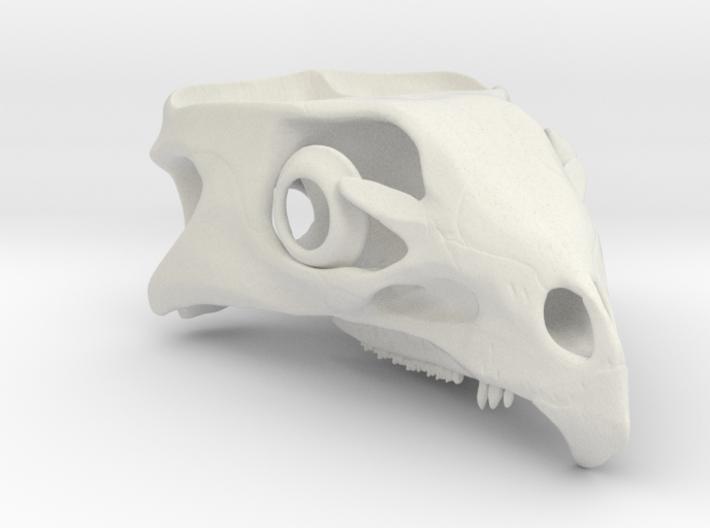 Aquilops americanus 1:1 - Cranium 3d printed