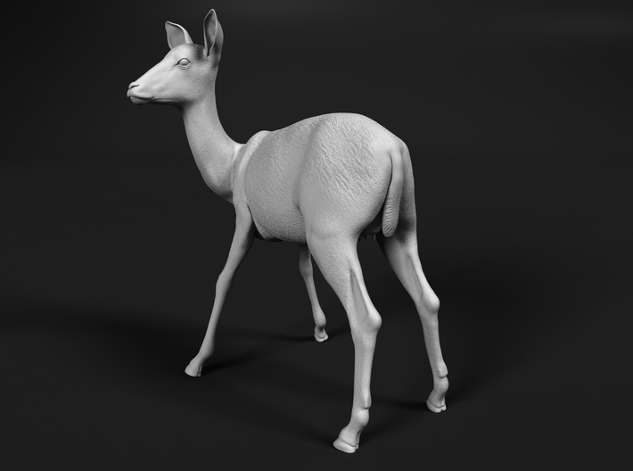 Impala 1:6 Watchful Female While Drinking 3d printed
