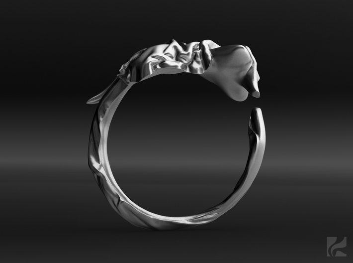 Fabric and Figure Ring 3d printed