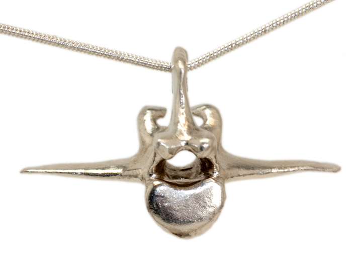 Vertebra #8 40mm with 4mm Hole 3d printed sterling silver