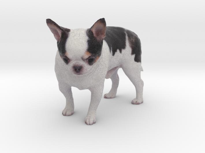 Scanned Chihuahua Dog -891 3d printed
