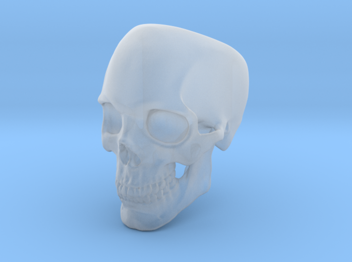 Human Skull Ring size 12 3d printed