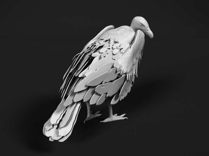 White-Backed Vulture 1:9 Standing 2 3d printed