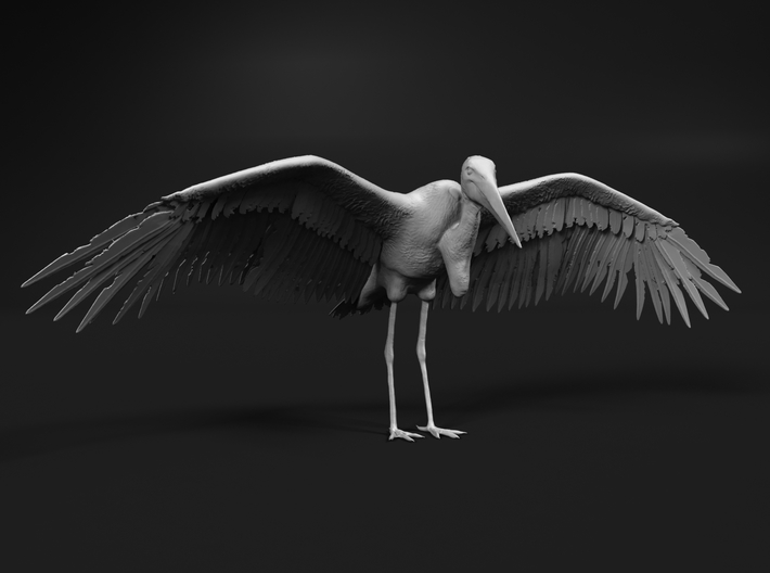 Marabou Stork 1:25 Wings Spread 3d printed