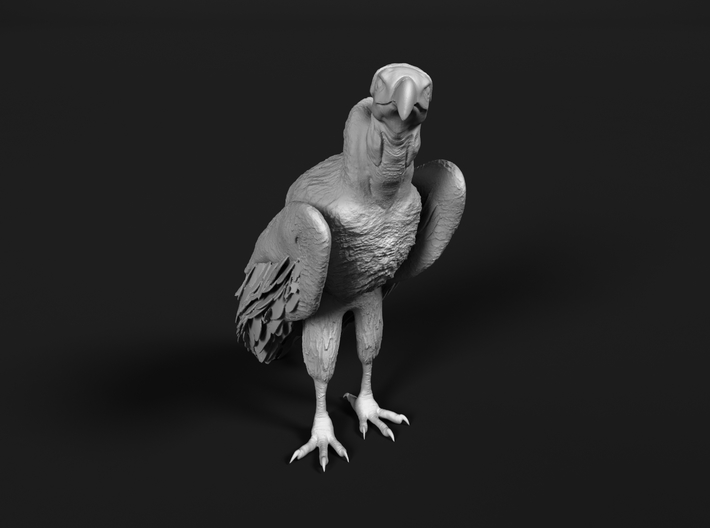 Lappet-Faced Vulture 1:45 Standing 3d printed