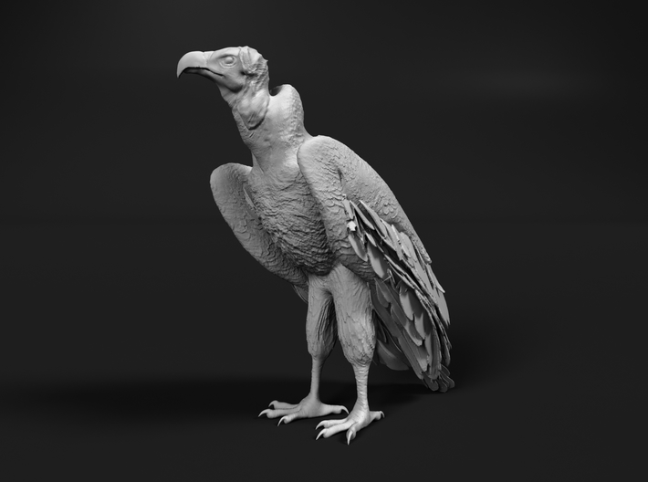 Lappet-Faced Vulture 1:16 Standing 3d printed