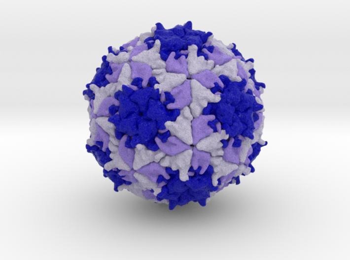 Mengovirus 3d printed